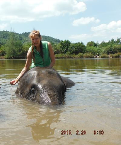 "ALT =[""Dr. Jolie Bookspan: Dr. Bookspan swimming with the elephants to help keep them cool""]"