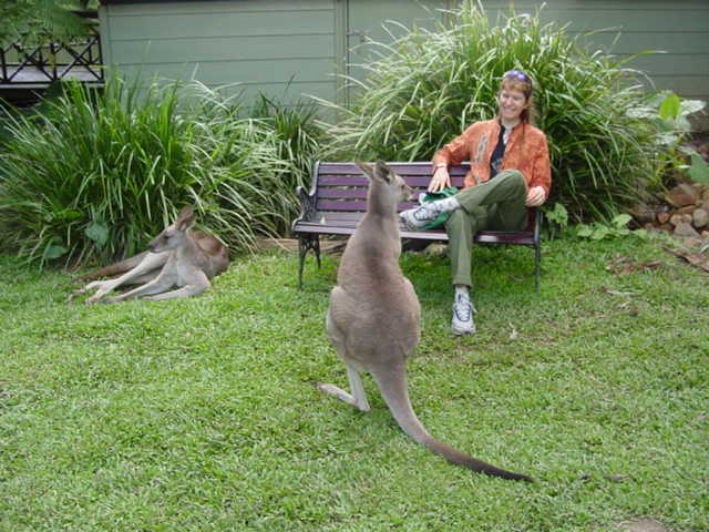 "ALT =[""Dr. Jolie Bookspan: Dr. Bookspan with kangaroo friends.""]"